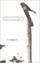 Domaine d'un rouge-gorge / Sculpture 1969
