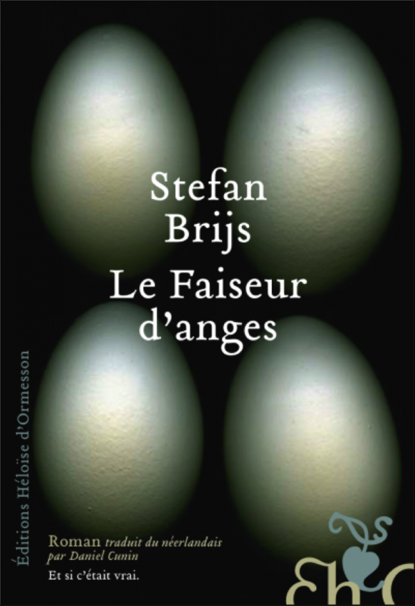 littérature,flandre,belgique,traduction,héloïse d'ormesson,roman,stefan brijs,génétique